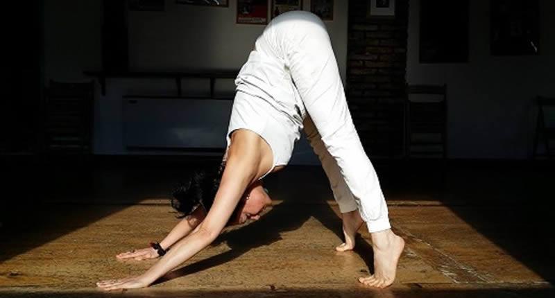 Asana Silvia Mileto Spanda Yoga Roma
